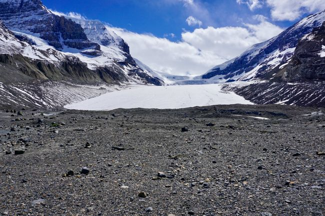 Kanada Tag 12 (4) - Icefields Parkway - Athabasca Glacier/Columbia Icefield