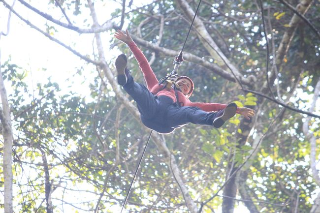 Flight of the Gibbon - ziplining in the Jungle