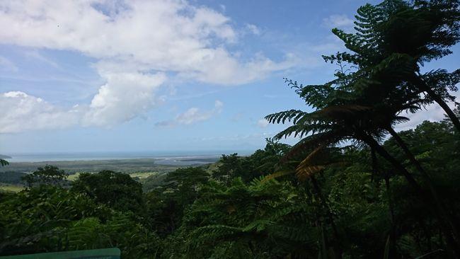 Ausblick vom Mount Alexandra