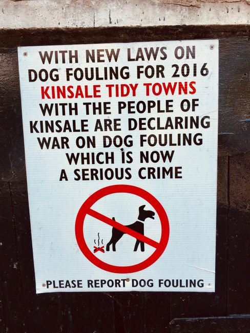 "Irland // Tag 5 // ""Tidy small towns"" Initiative"