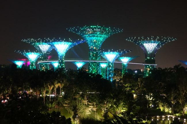 Day 205 Garden by the Bay