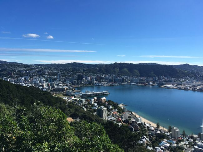 Wellington vom Mt. Victoria