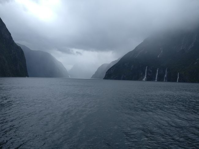Ab in den Nebel des Milford Sounds