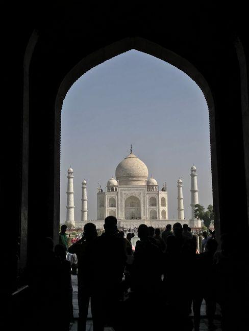 Bella in India