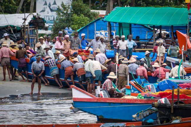 Sardellen Fischerhafen