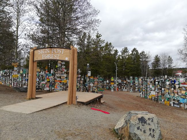 Sign Post Forest in Watson Lake