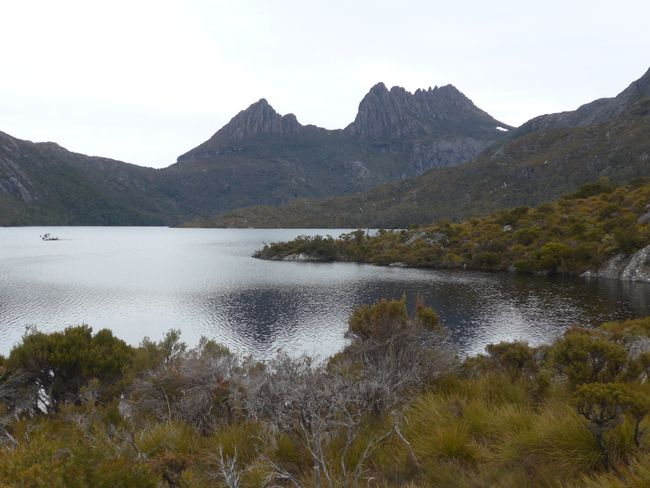 Tasmanien: Cradle Mountain Nationalpark (Australien Teil 19)