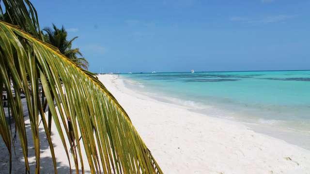meeru island eine maledivische insel vakantio. Black Bedroom Furniture Sets. Home Design Ideas