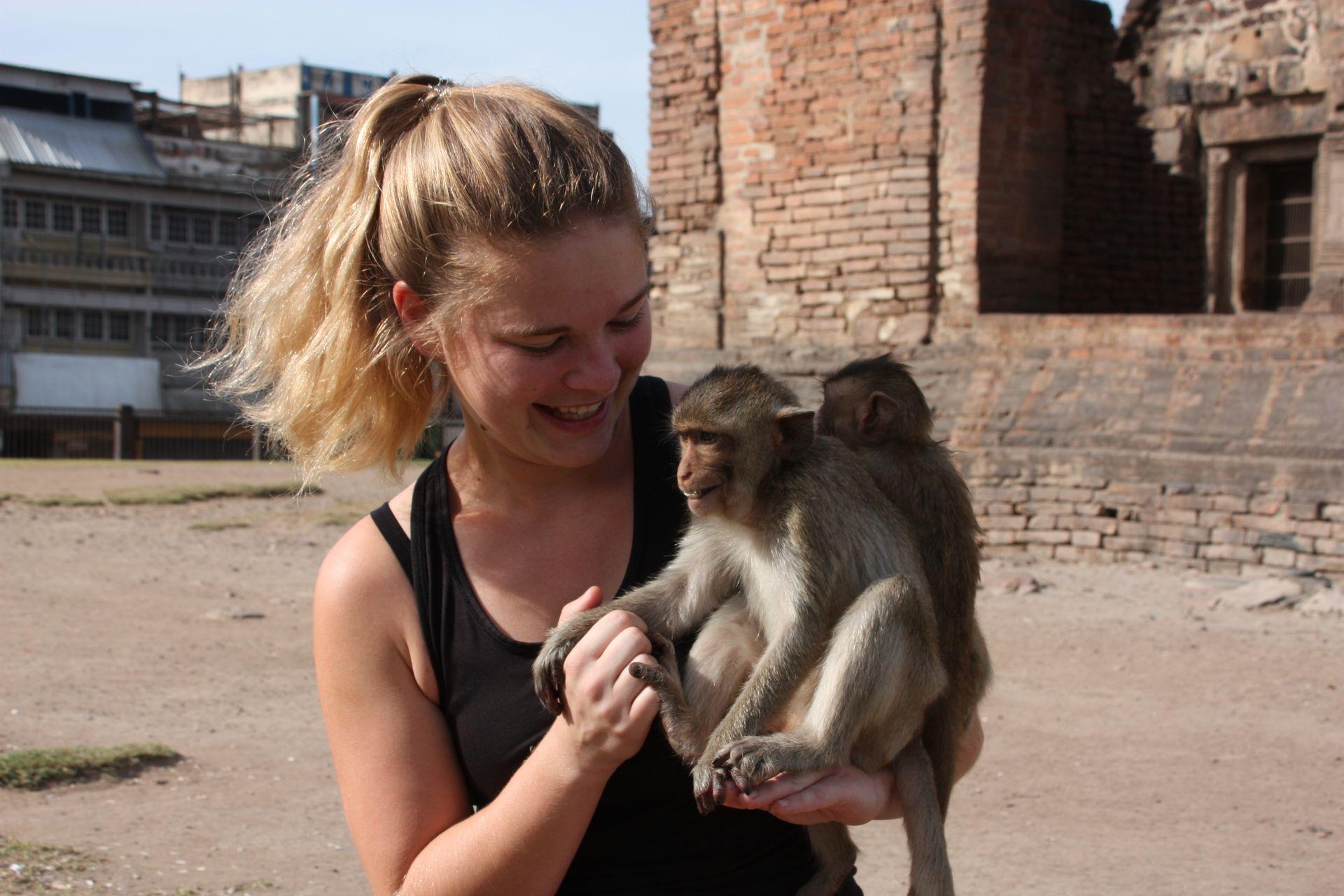 Innenarchitektur Haustier Affe Sammlung Von Ich Glaub Mich T Der