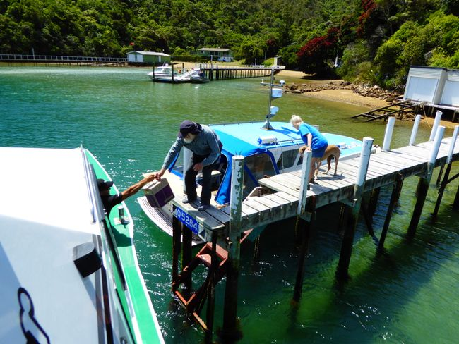 Tag 22 - Mailboat Run durch die Marlborough Sounds