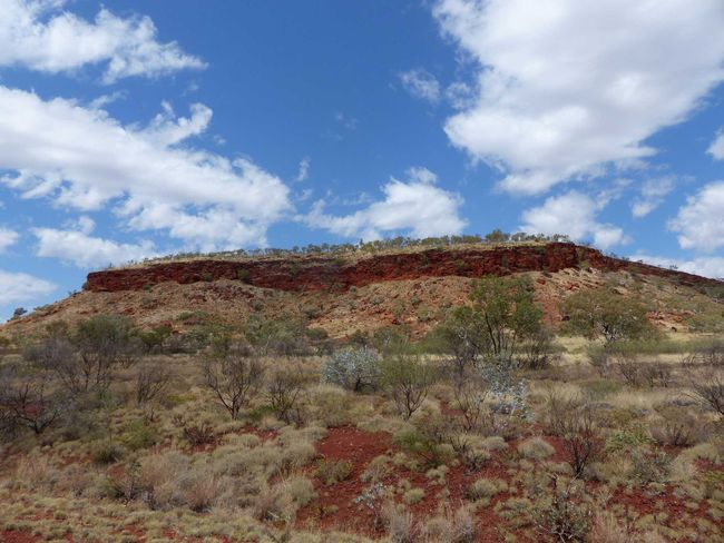 Tag 19: Karijini National Park - Port Hedland