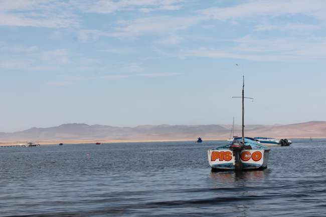 Paracas - Enjoying Beach, Wildlife and Desert