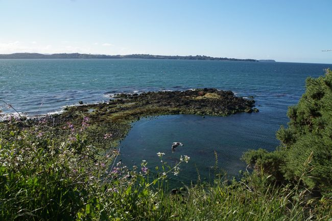 Blick vom Fort in Ancud aufs Meer
