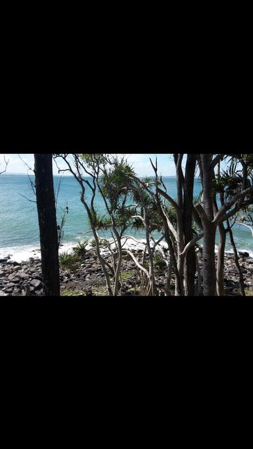 Noosa - beautiful National park, baaaad sunburn