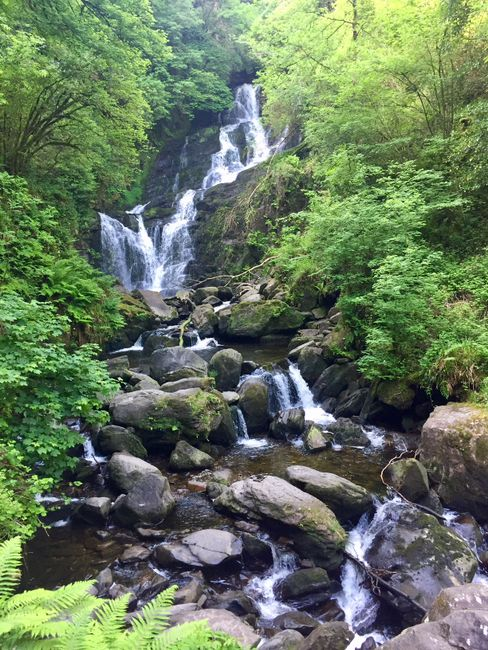 Irland // Tag 4 // Wasserfall im Killarney Nationalpark