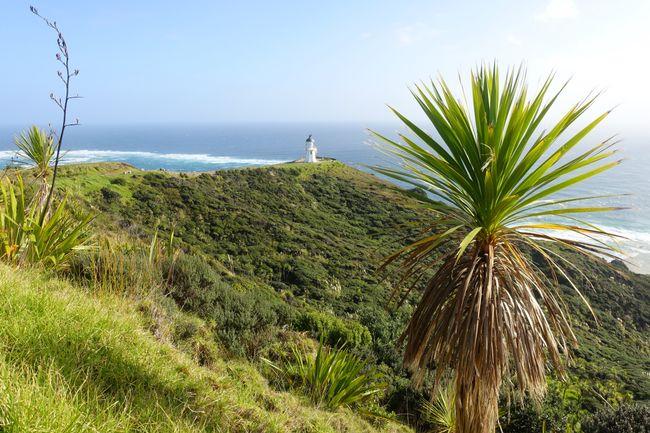 Cape Reinga, nördlichster Punkt der Nordinsel