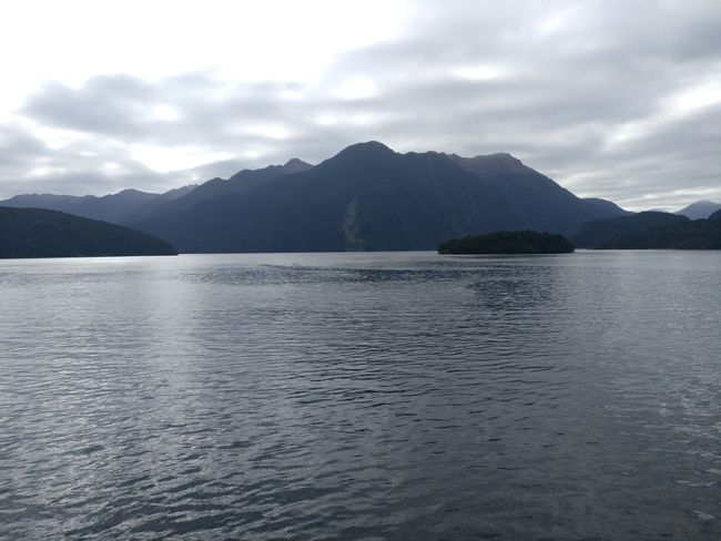 Tag 15 - Sounds der Fjordlande: Der Doubtful Sound