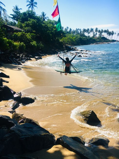 Eat, Sleep, Surf and repeat - die letzte Woche in Sri Lanka