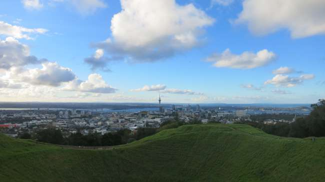 Aucklands Skyline vom Mount Eden