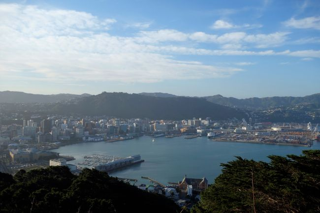 Wellington - View from Mount Victoria