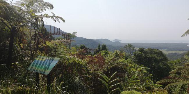 Mount Alexandra Lookout